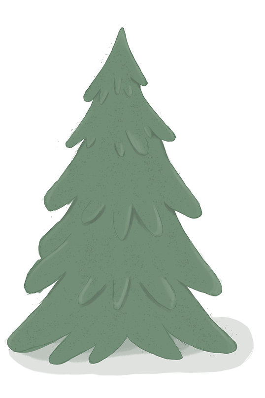Adventsbaum.jpg