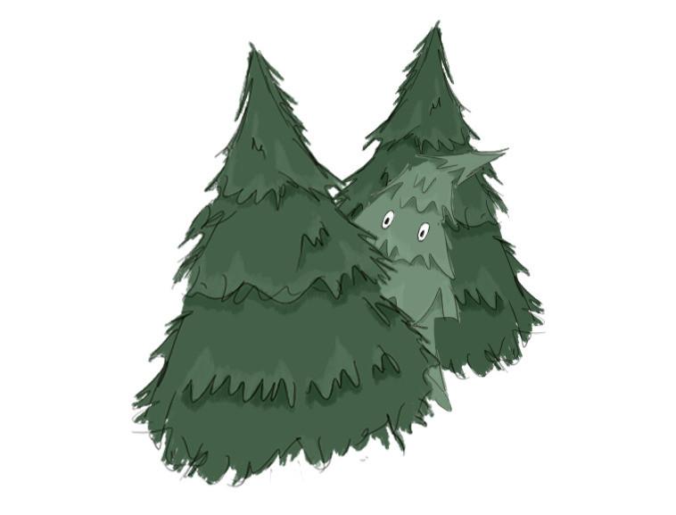 kleiner Tannenbaum schaut zwischen zwei anderen hervor