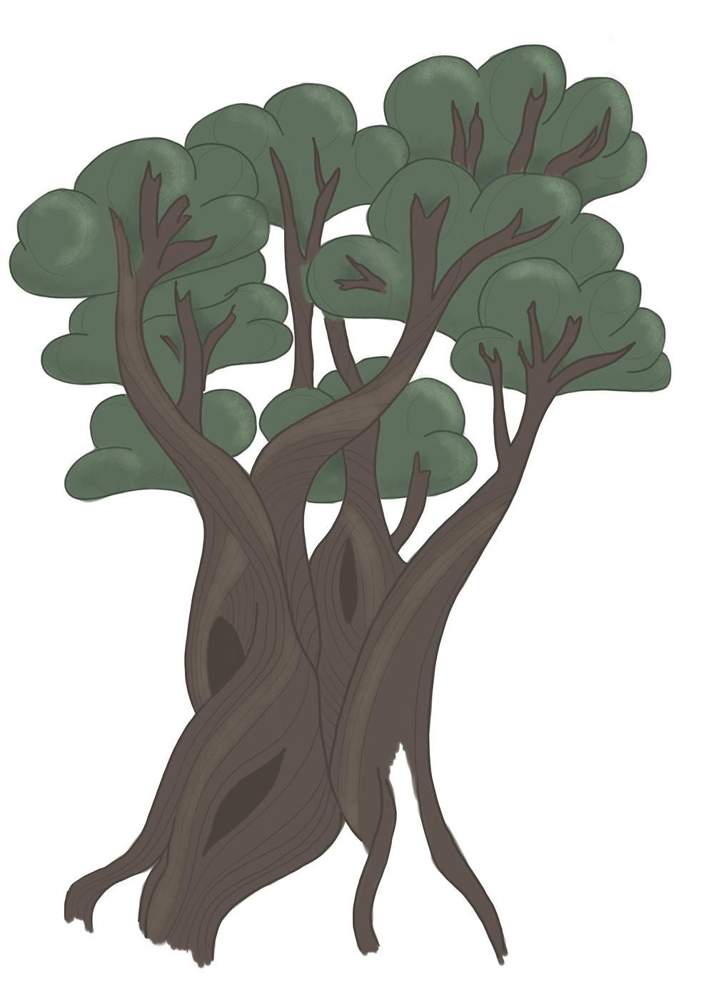 Alter dicker Baum. Steineiche
