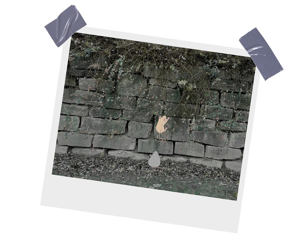 Freddi klettert auf die Mauer Fritzi wartet unten