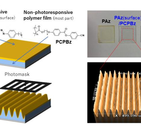 Surface deep: Light-responsive top layer of plastic film induces movement