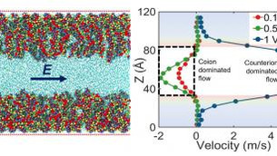 Surprising ionic and flow behaviors with functionalized nanochannels