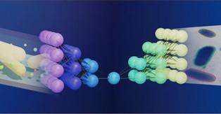 Machine learning peeks into nano-aquariums