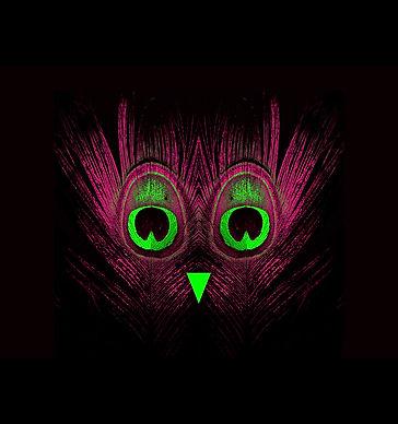 pff-visuel_horiz_rvb-bd-tt-width-1000-he