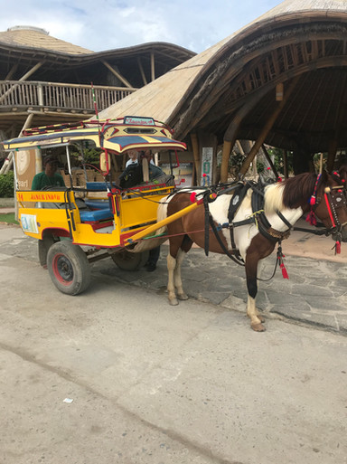 India horse carriage