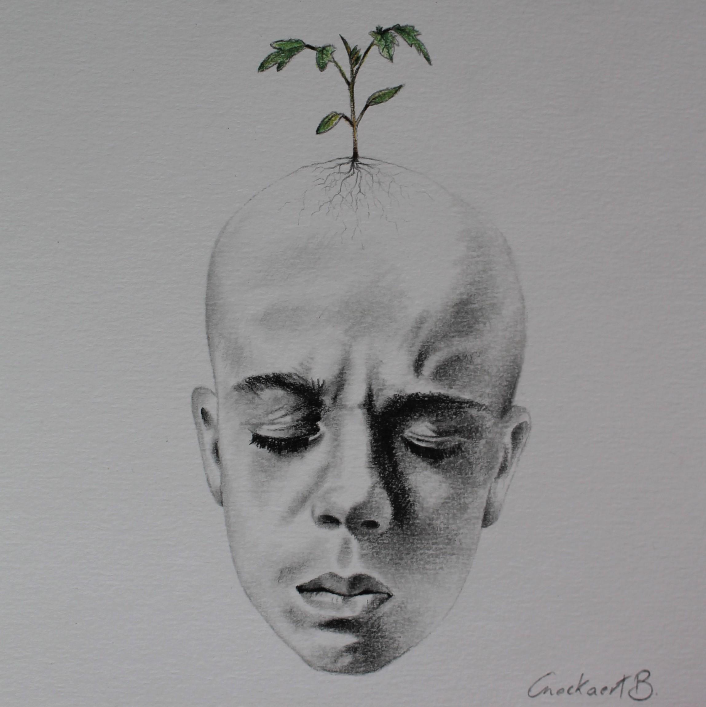 Grow - 2/3