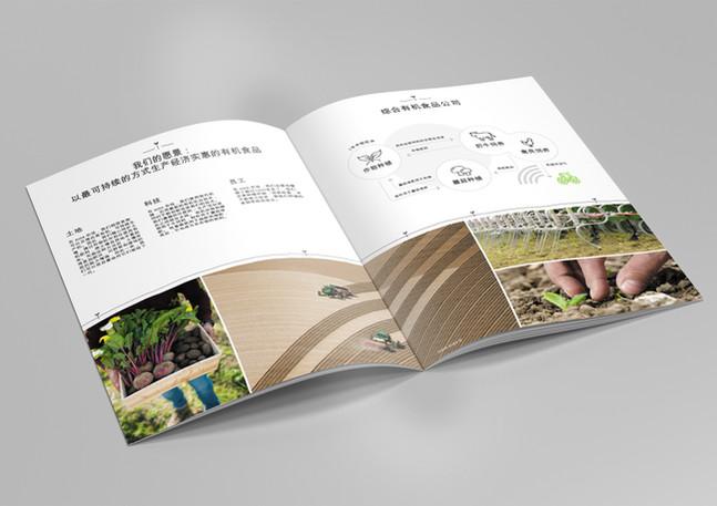 Mockup_A4_Brochure_CH.jpg