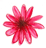 red daisy.png