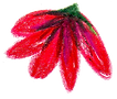 red flower.png