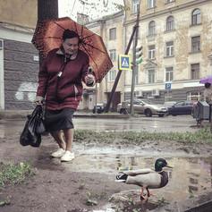 dmitry markov 010