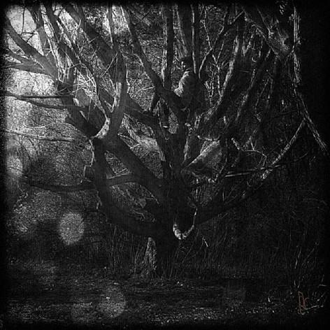 judith in den bosch 04