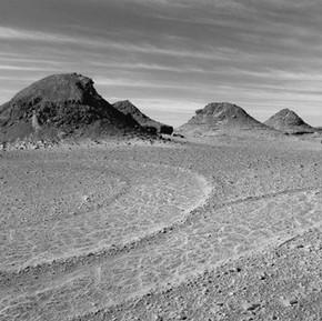 den hollander deserts 01
