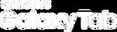 Samsung_Galaxy_Tab_new_logo.png