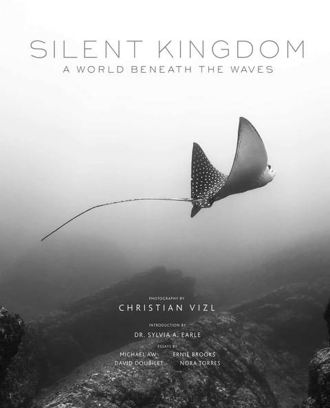 SilentKingdom.jpg