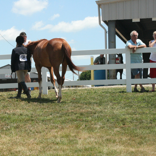 2011 Fair - Tuesday - July 12 131.jpg