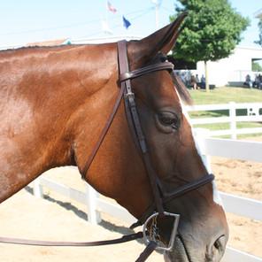 2011 Fair - Tuesday - July 12 152.jpg