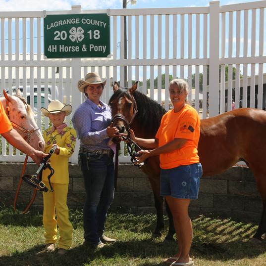 Pony Halter Grand and Reserve Champions