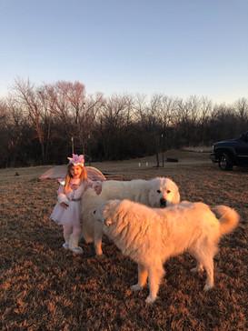 Dogs n unicorn Grace.jpg