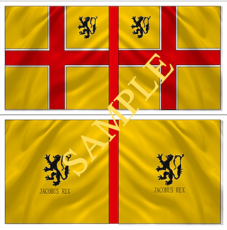 Jacobite Flag sheet 9 Clanrickarde  Regiment