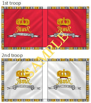 Williamite Cavalry Flag sheet 80 King's Life Guards 1st and 2nd Troops