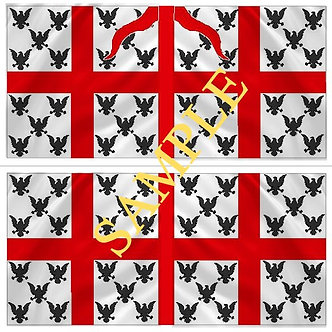 Williamite Flag sheet 60 Trelawney's Regiment