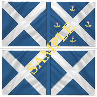 Williamite Flag sheet 53 Scots Regiment of Guards