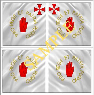 Jacobite  Flag Sheet 2 O'Neil's Regiment