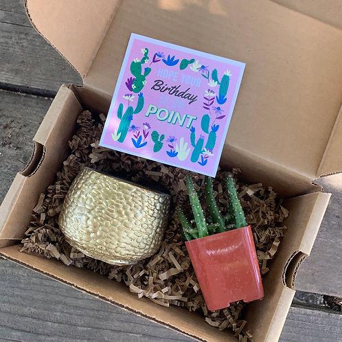 Birthday on Point Box — Gold Pot
