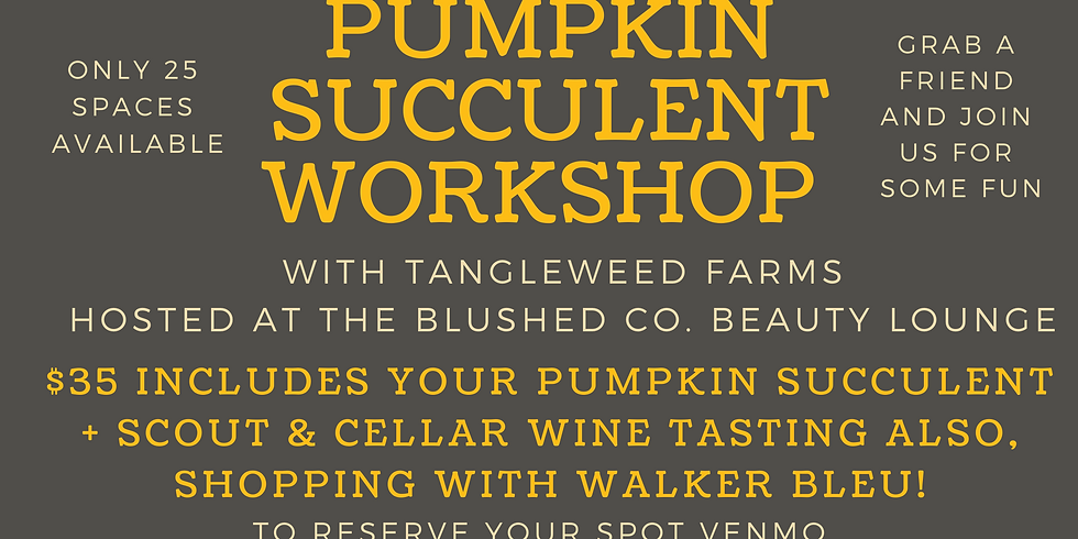 Pumpkin Succulent Workshop at Blushed
