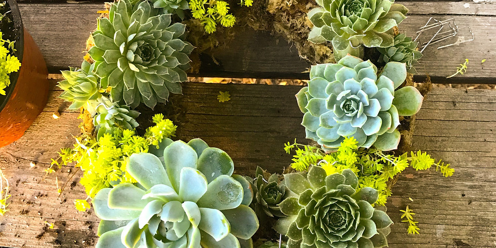 Grapevine or Moss Succulent Wreath