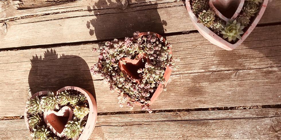 Succulent Heart Workshop