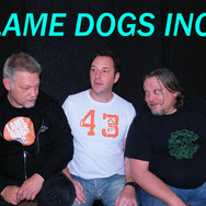 LAME DOGS INC
