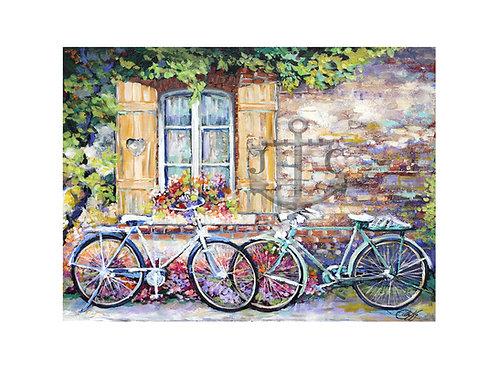 Bikes & Shuttered Window