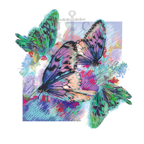 Butterflies (Square)