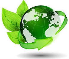 Environnement.jpg