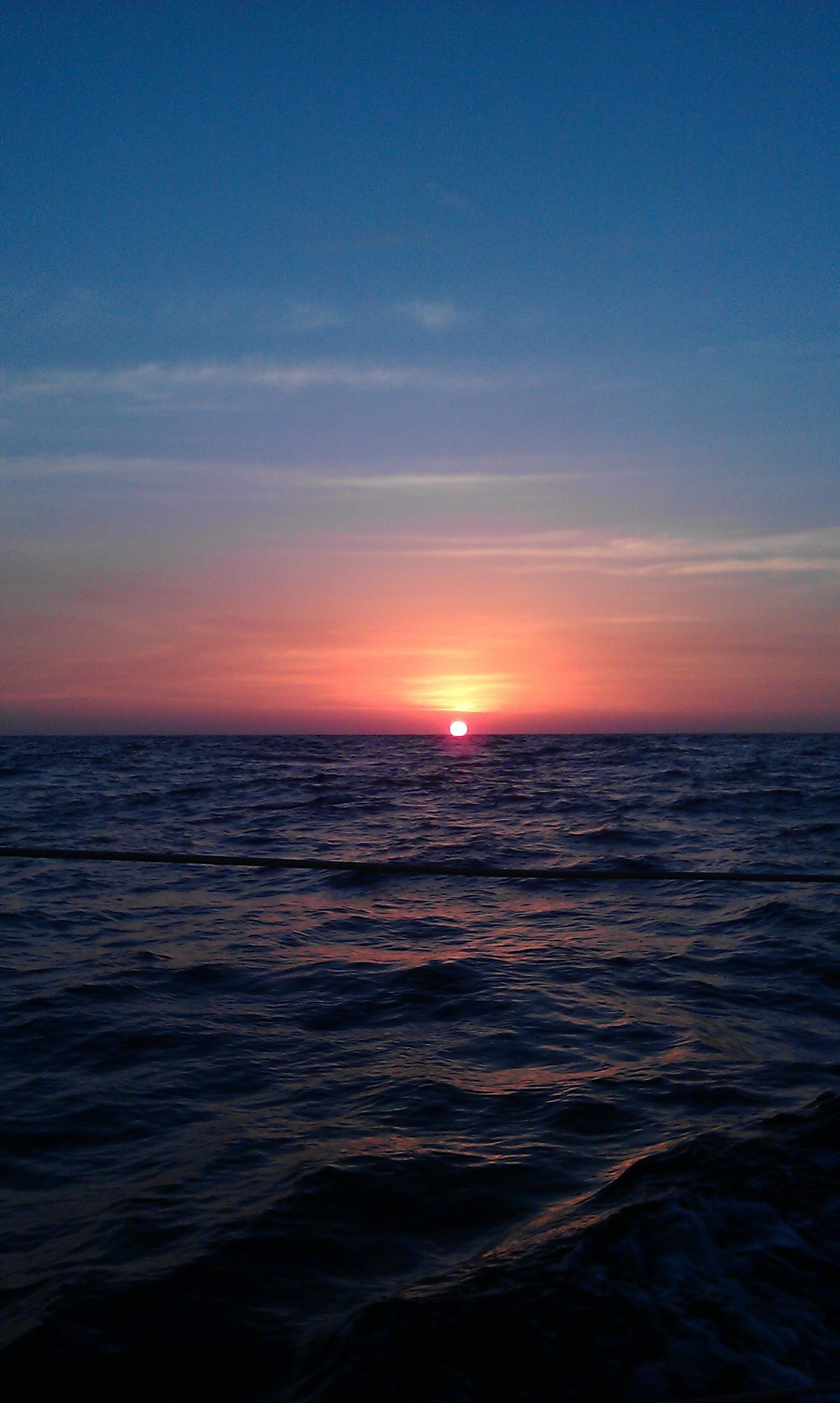 Atardecer avistamiento de cetaceos