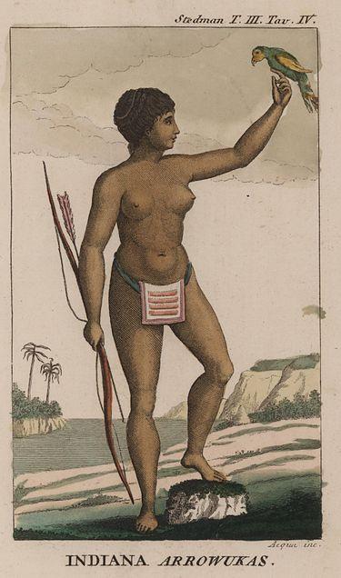 Arawak woman by Jhon Gabriel Stedman