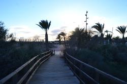 Parque Regional San Pedr