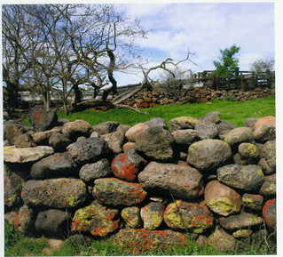 Stone Fences & Corrals in the South Central Sierra Nevada Foothills