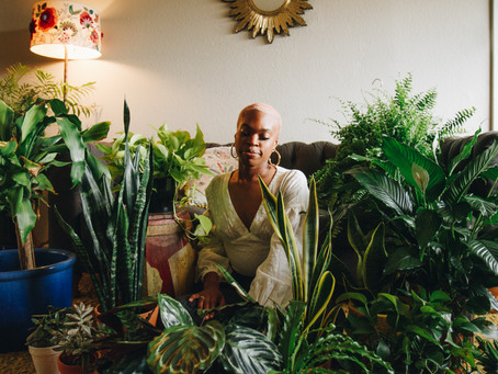 The Secret Life of Plants with Bri | A Lifestyle Session