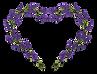 lavender-5279192_1920.png