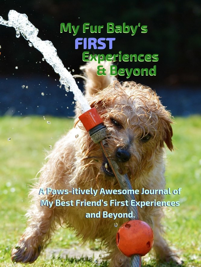 My Fur Baby's First Experiences and Beyond