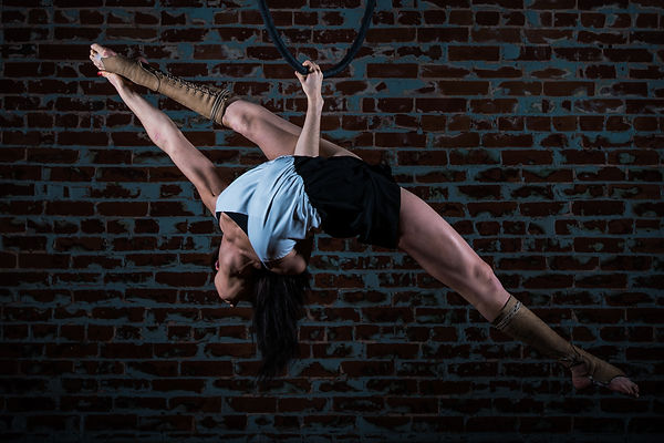 Aerial hoop, performer, hire, jobs, circus, entertainment, pretty, contortion, long hair, acts, talent, show, company, cerceau, lyra, cirque