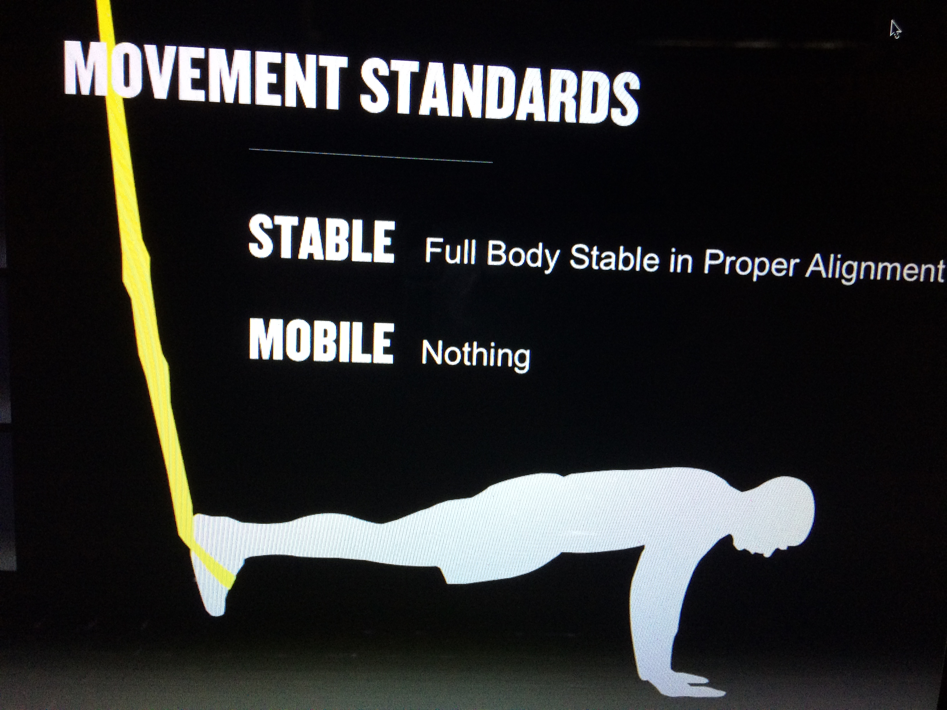 Movement Standards for Plank