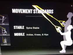 Movement Standards for Squat