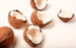 Coconut-image-_edited.jpg
