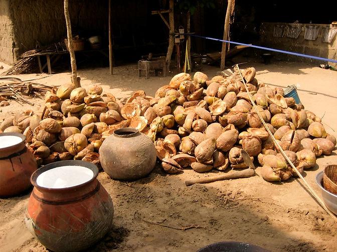 ghanacoconut_edited.jpg
