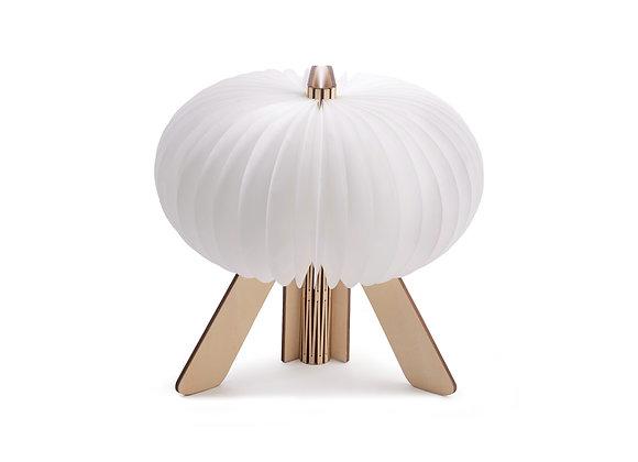 Gingko R Space Lamp - Maple Wood
