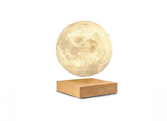 Gingko Smart Moon Light - Ash Wood