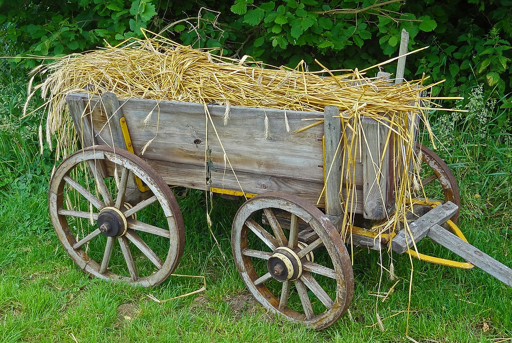 straw-carts-563005_1280.jpg